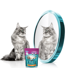 Purina One для кошек